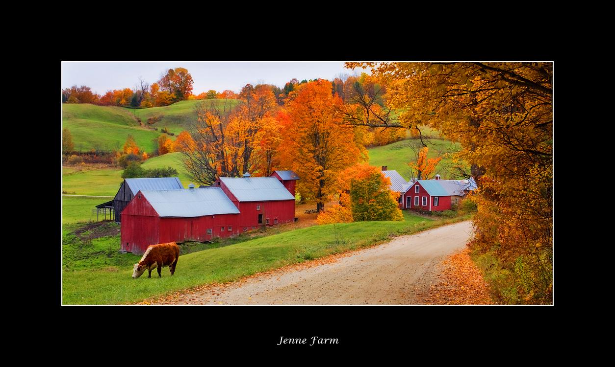 Jenne Farm Reading Vermont